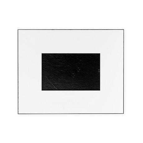 Evp Dark Picture Frame
