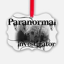 paranormal investigator light Ornament