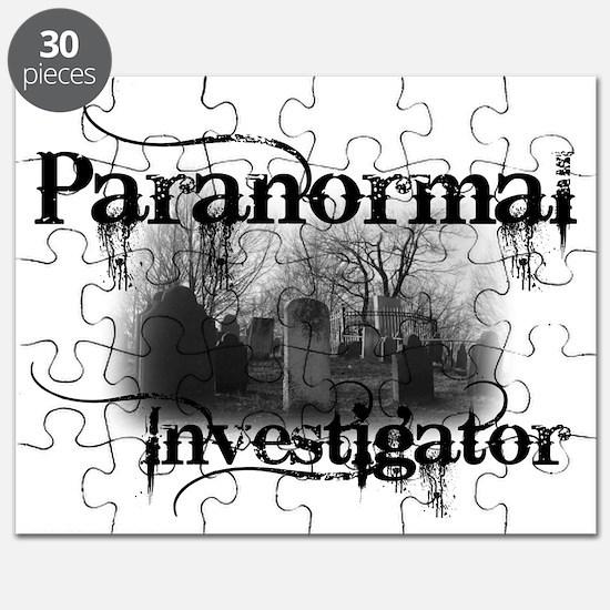 paranormal investigator light Puzzle
