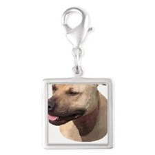 PIT BULL Silver Square Charm
