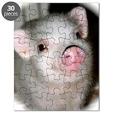 iphone case_2-001 Puzzle