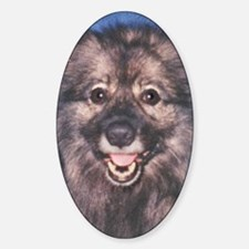 keeshond-photo Decal