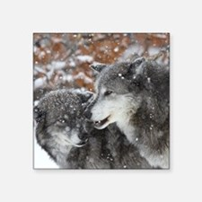 "ms shn wolf Square Sticker 3"" x 3"""