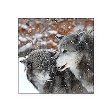 """x10 shn wolf Square Sticker 3"""" x 3"""""""