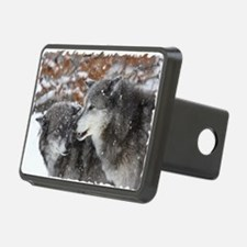 xW shn wolf Hitch Cover