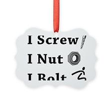 Screw Nut Bolt Black Picture Ornament