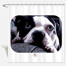 Sad Boston Terrier Shower Curtain