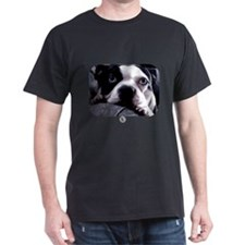 Sad Boston Terrier T-Shirt