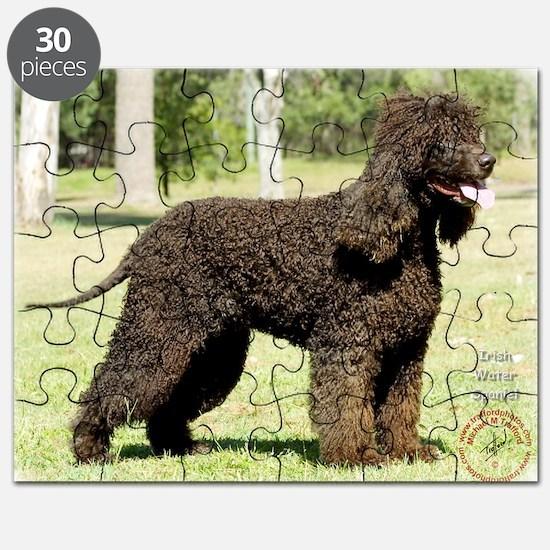 Irish Water Spaniel 9R032D-232 Puzzle