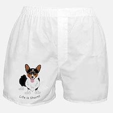 Corgilight Boxer Shorts