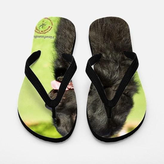 Newfoundland 9M099D-012 Flip Flops