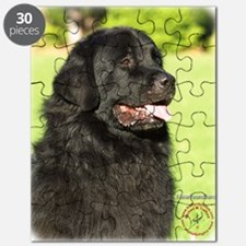 Newfoundland 9M099D-012 Puzzle