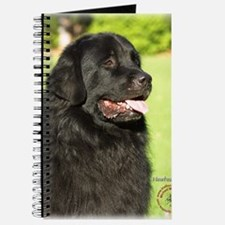 Newfoundland 9M099D-012 Journal