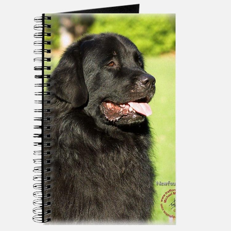 Newfoundland 9M099D-012 Journal