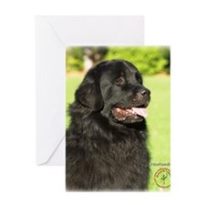 Newfoundland 9M099D-012 Greeting Card