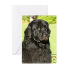 Newfoundland 9M099D-018 Greeting Card