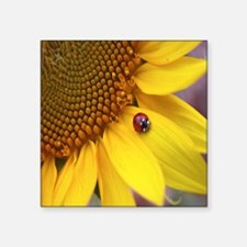 "Throw Pillow Ladybug on Sun Square Sticker 3"" x 3"""