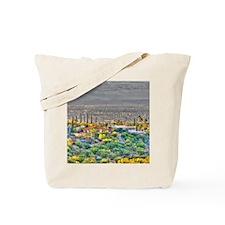 hdr2 Tote Bag