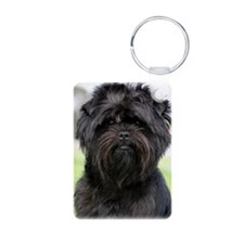 Affenpinscher 9Y516D-049 Aluminum Photo Keychain