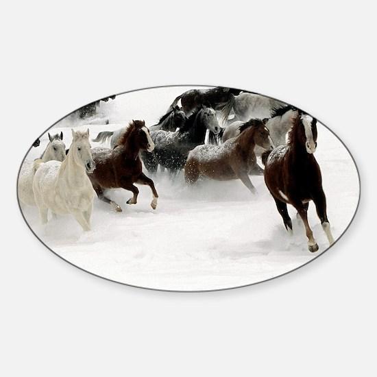 blanket2 Sticker (Oval)