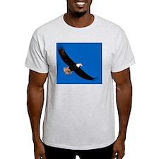 blanket24 T-Shirt