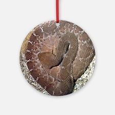 (12p) Rattler Round Ornament