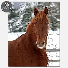 chestnut head Puzzle
