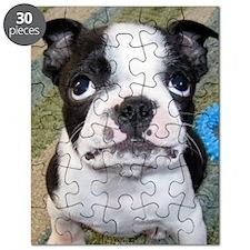 Boston Puppy Puzzle