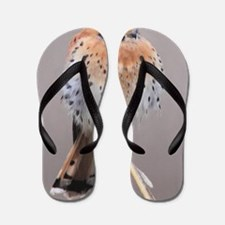 ms Kestral Flip Flops