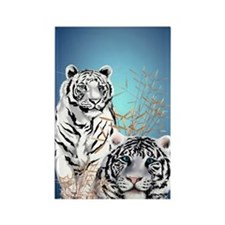 Two White Tigers  441_iphone_case Rectangle Magnet