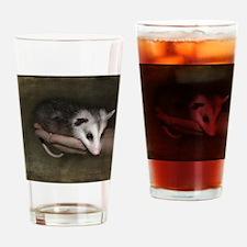 Possum child Drinking Glass