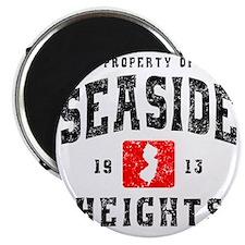 Seaside 1913 Magnet