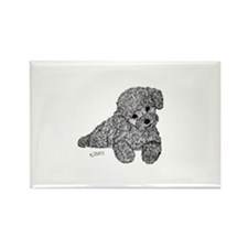 Poodle puppy Magnets