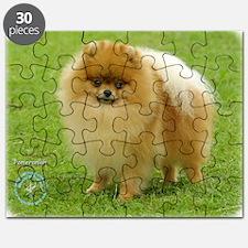 Pomeranian 8T087D-06 Puzzle