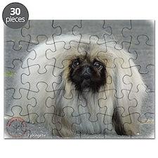 Pekingese 9R072D-026 Puzzle