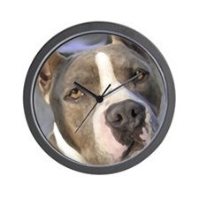 Cute American pit bull Wall Clock