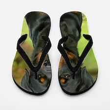 Rottweiler 9W044D-073 Flip Flops