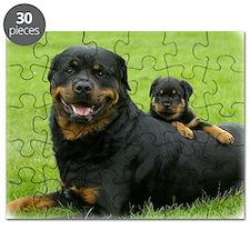 Rottweiler 9W025D-081 Puzzle