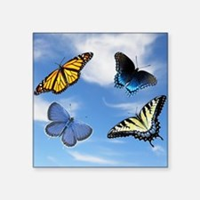 "Assorted Butterflies  Mouse Square Sticker 3"" x 3"""