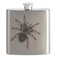 tarantula_cushion Flask