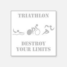 "Triathlon Destroy Grey Square Sticker 3"" x 3"""