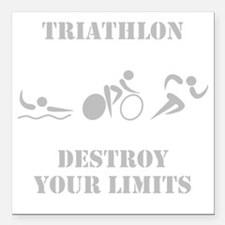 "Triathlon Destroy Grey Square Car Magnet 3"" x 3"""