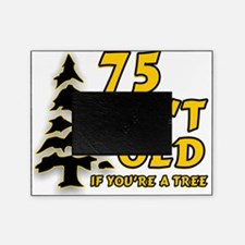 75 Isnt old Birthday Picture Frame
