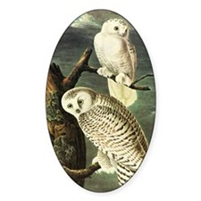 audubon 3 Decal