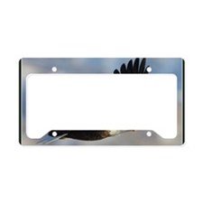 x14Bb  flightschool License Plate Holder