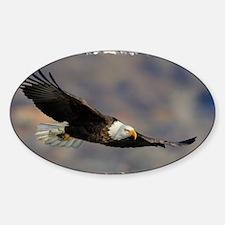 x14W FirstFlight Sticker (Oval)