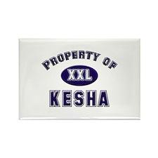 Property of kesha Rectangle Magnet