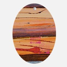 sunburnt country iphone 3G Oval Ornament