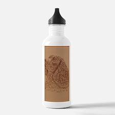 Water_Spaniel_KlineSq Water Bottle