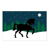Dressage holiday Postcards